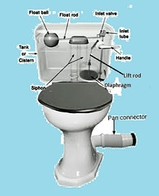 Common problems with toilet